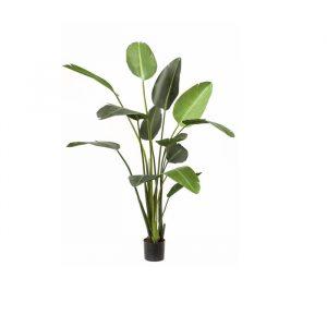 Kunstig strelitzia plante i 120cm.