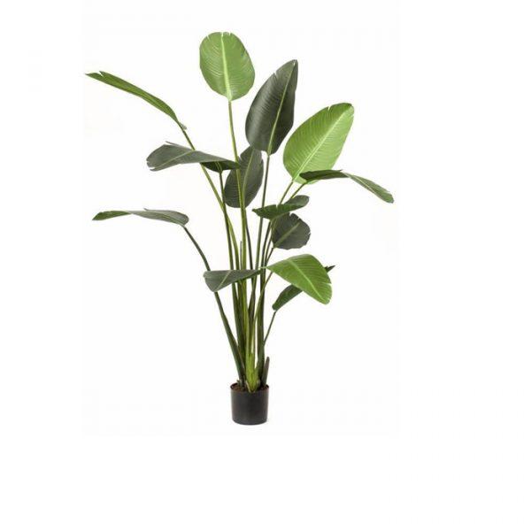 Kunstig strelitzia plante i 180cm.